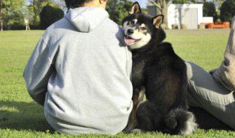 気がつけばいつの間にかウリふたつでした…愛犬は飼い主の鏡です!