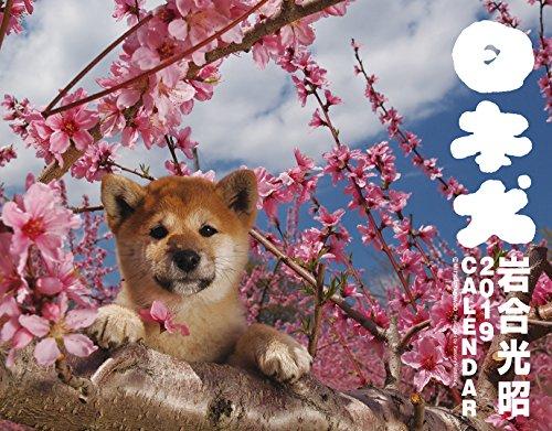 2019カレンダー 日本犬