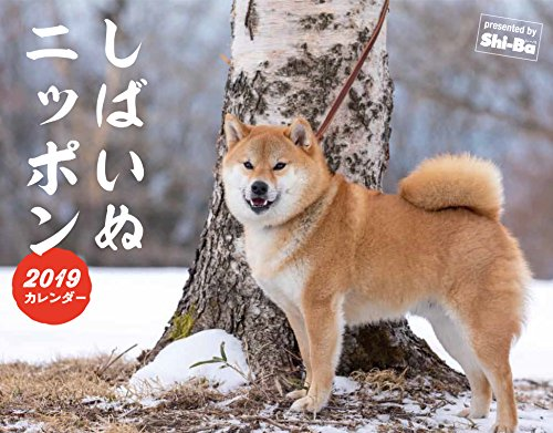 2019カレンダー しばいぬニッポン