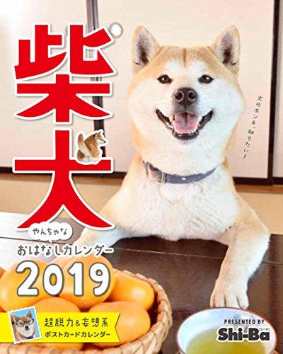 2019カレンダー 柴犬やんちゃな おはなしカレンダー