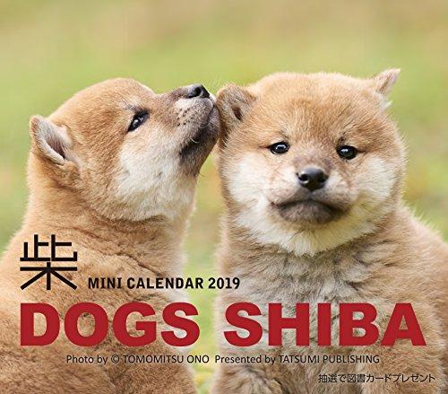 2019ミニカレンダー ドッグズ「柴」