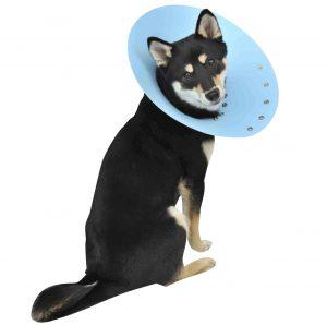 犬レーダー