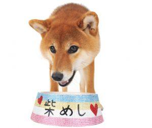 犬グッズデコ