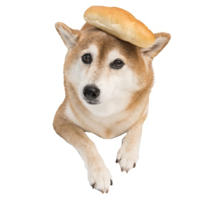 コッペパンと柴犬