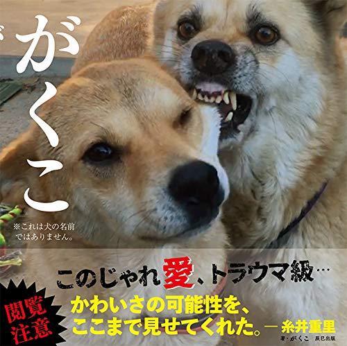 【Amazon.co.jp 限定】がくこ 魔除け札付き限定版