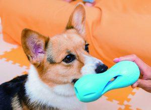 犬の知育オモチャ